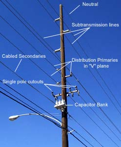 Subtransmission Lines With Distribution Primaries And
